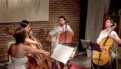 Alma Cello Quartet